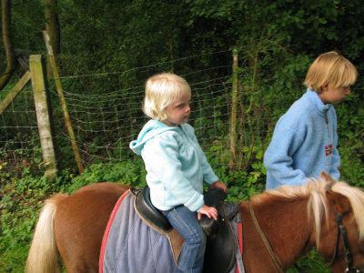 Ilie verkent het Pajottenland per pony